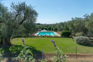 Click to enlarge image pool-toscana-poggiocavallo-01.jpg